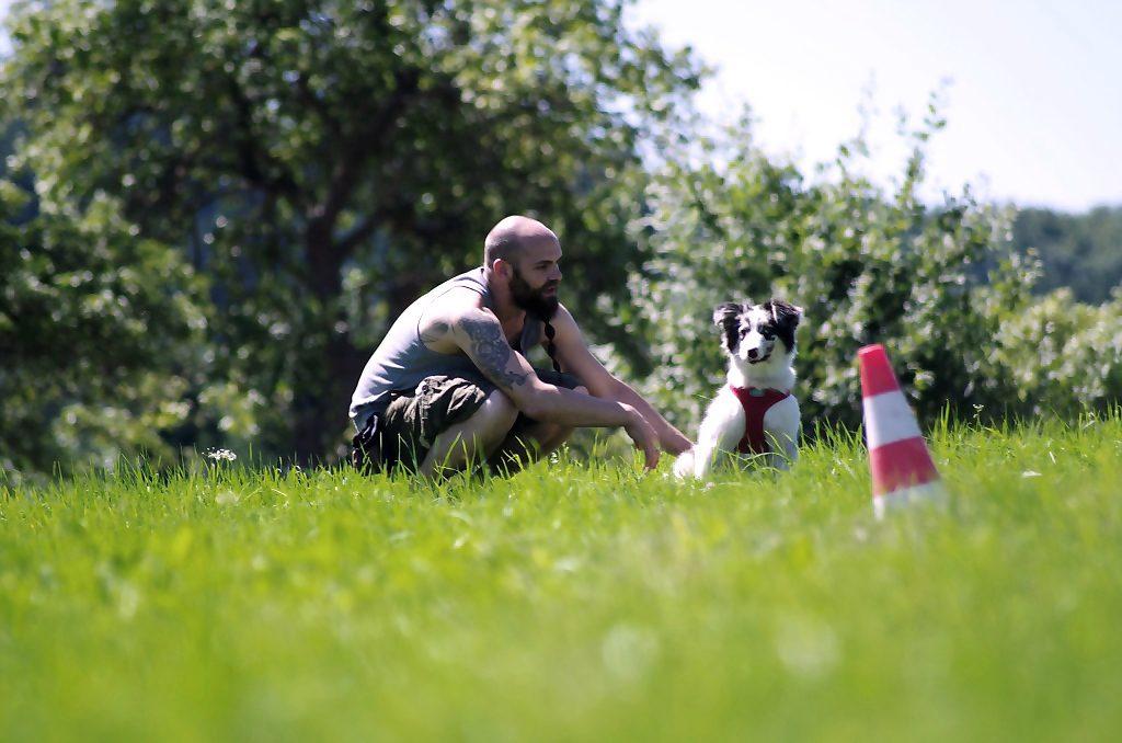 Björn und Marvel im Grünen